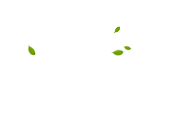 Дизайн сайта Заборы ГК «Стандарт»