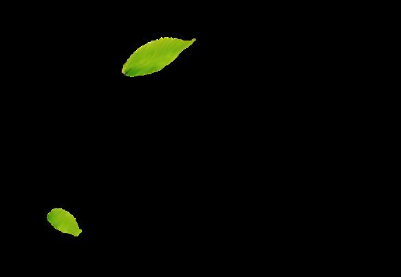 Дизайн сайта «Манигор»